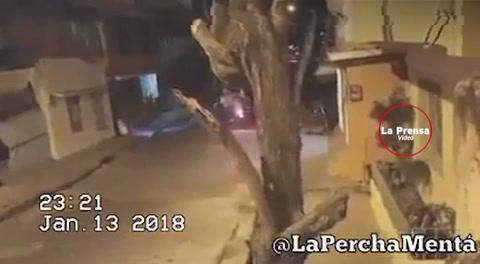 Ladrones van a robar y terminan robados