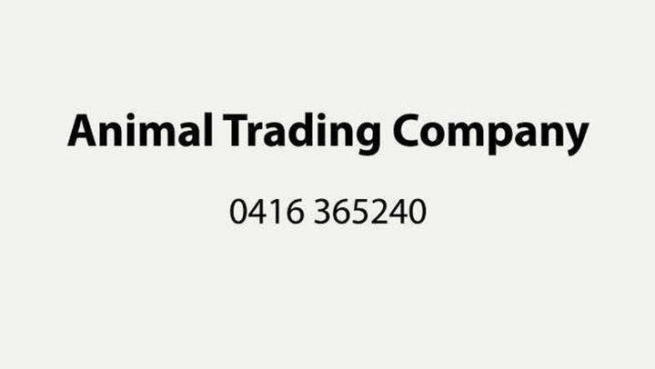 Animal Trading Company BV - Bedrijfsvideo