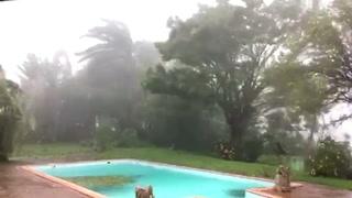 María alcanza categoría máxima de un huracán