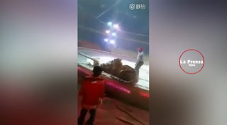 Un tigre y un león atacan a un caballo en un circo