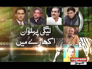 مسلم لیگ ن کے قومی اسمبلی اور پنجاب اسمبلی کے امیدوار فائنل