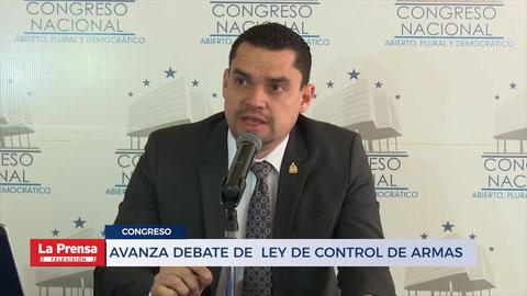 AVANZA DEBATE DE  LEY DE CONTROL DE ARMAS