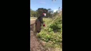 Se viraliza video de monja con motosierra
