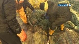 Önce ağa takıldı, sonra balıkçıyı ısırdı