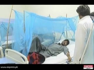 راولپنڈی میں ڈینگی بے قابو
