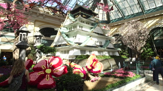 The Bellagio Conservatory's spring display has a Japanese theme