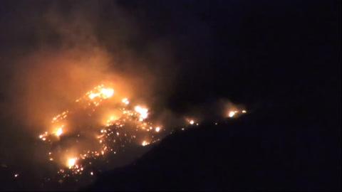 Remite incendio que golpea zonas protegidas en Canarias