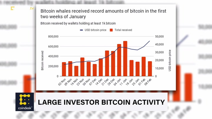 Large Investor Activity Evident on the Bitcoin Blockchain