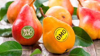 Doc Thompson runs down Fast Facts on GMOs