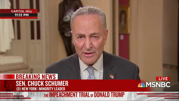 Schumer: 'Most' Republicans Are Convinced Trump 'Did It' - House Case 'Irrefutable' 'on the Facts'