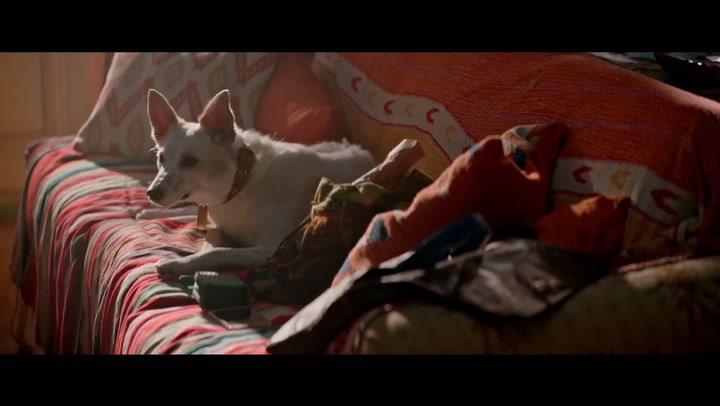 Bilingual Trailer