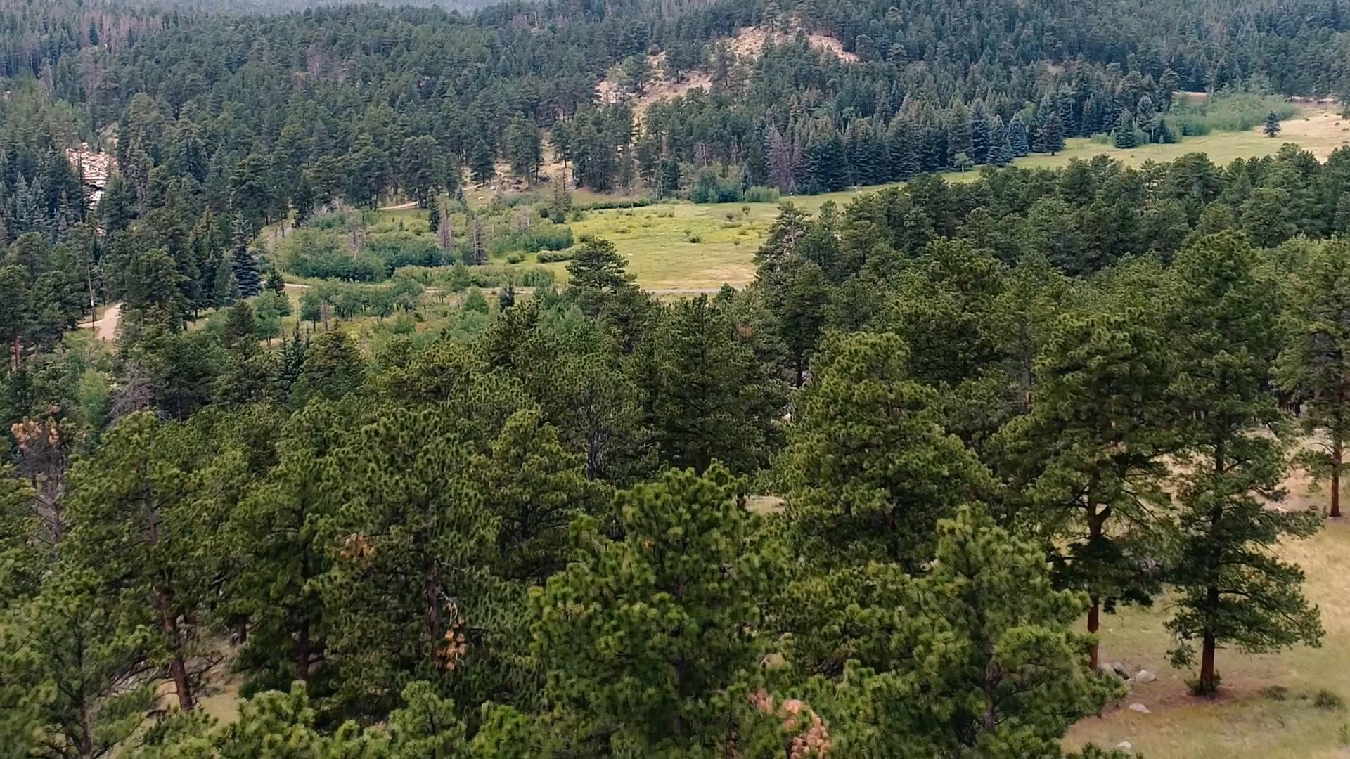 Eric + Mariam   Estes Park, Colorado   Della Terra