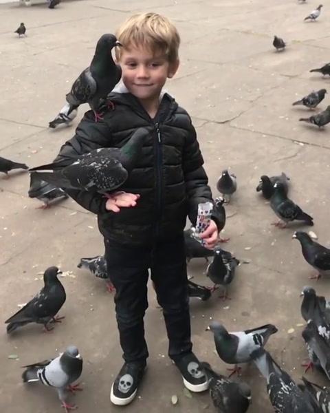Mariano Martínez publicó un video de su hijo besando una paloma que generó polémica
