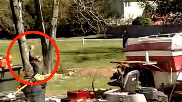 Mannen tabbet seg ut da han skulle felle treet