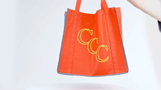 Reflective Large Grocery Tote Bag