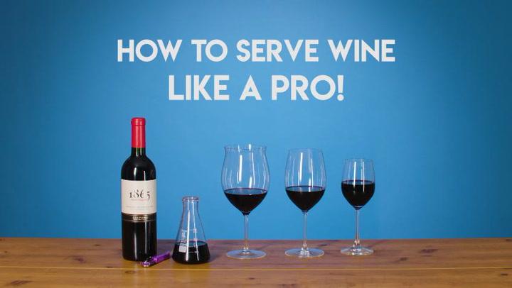 Wine 101: How to Serve Wine Like a Pro