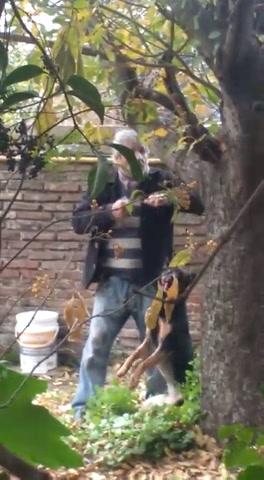 Un hombre de Fray Luis Beltrán fue filmado ahorcando a un perro