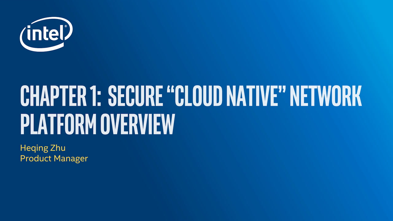 Chapter 1: Secure Cloud Native Platform Overview