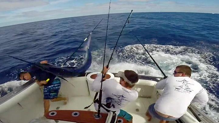 Fisker nær spiddet av fisk