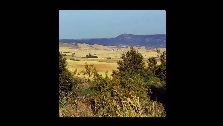 Bekijk hier de trailer van Camino