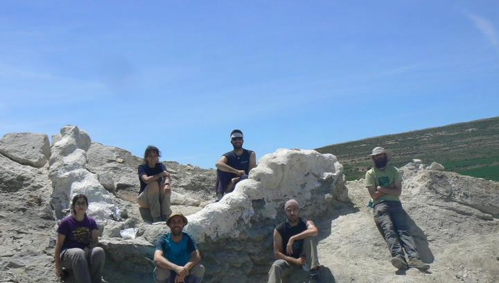 Encuentran una columna vertebral de un colosal dinosaurio en Teruel