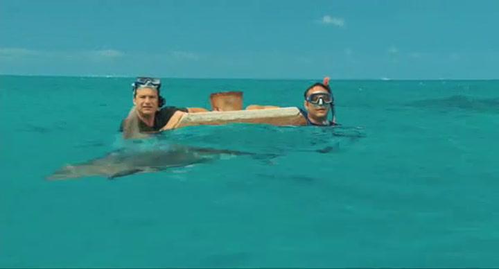 'Shark Attack'