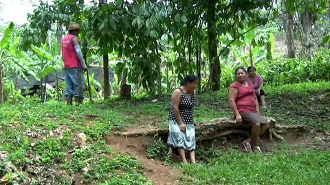 Crisis del café en el estado mexicano de Chiapas provoca éxodo de campesinos