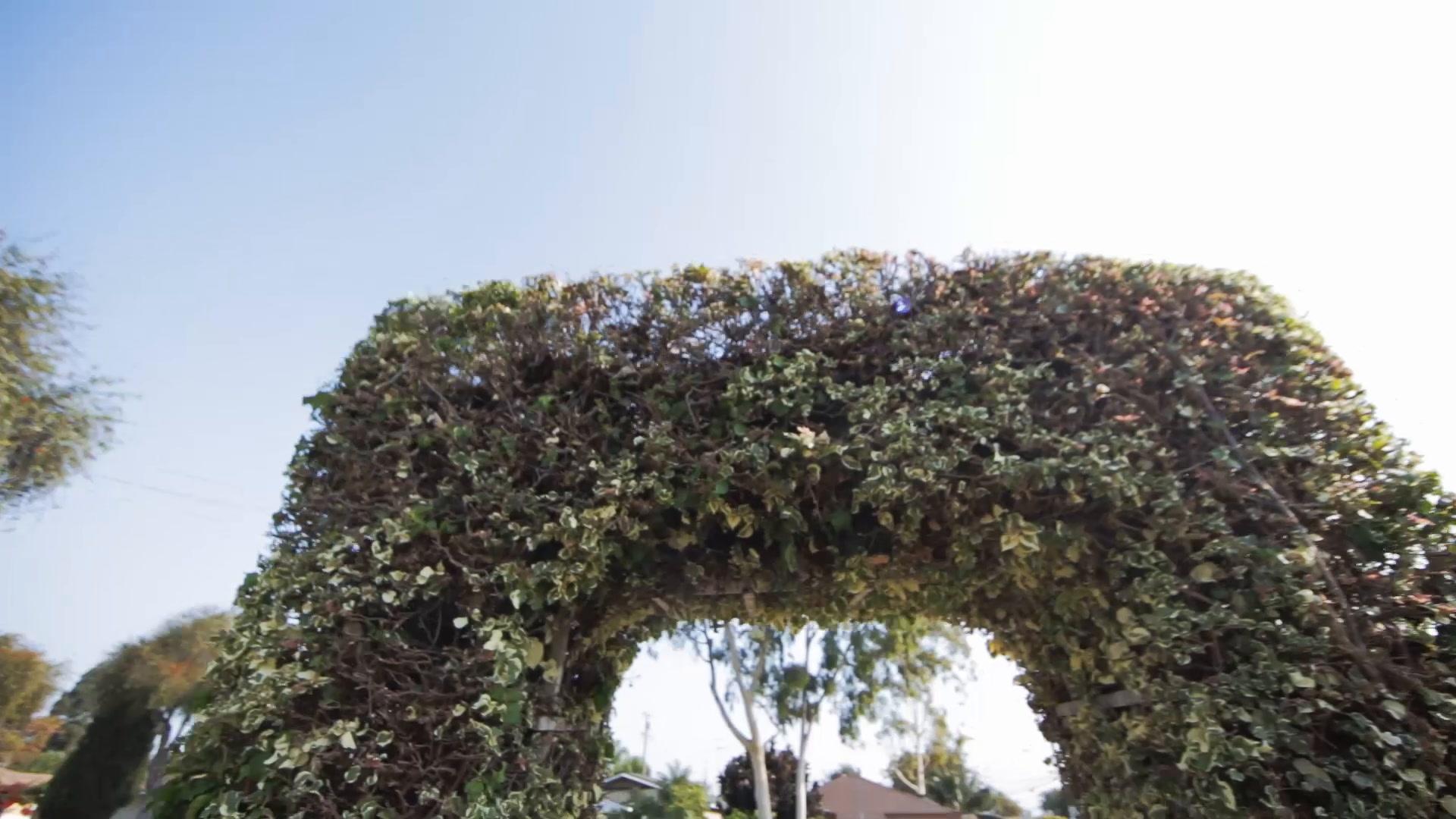 Teresa + Henry | Anaheim, California | Hyatt