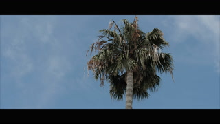 Makenna + Dan | San Diego, California | The Oceanview Room at Ballast Point