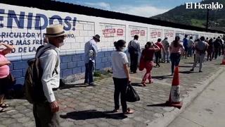 Capitalinos realizan larga fila para comprar en Feria del Agriculotor