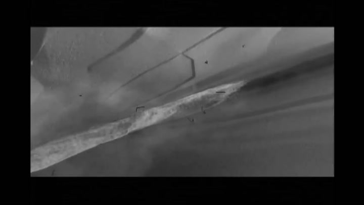 Ice Age: The Meltdown - DVD Clip 03