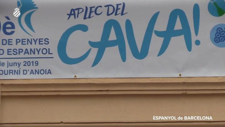 Así ha sido el 29º Aplec de Penyes del RCD Espanyol de Barcelona a Sant Sadurní