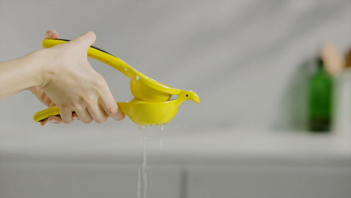 Preview image of OXO Citrus Squeezer video
