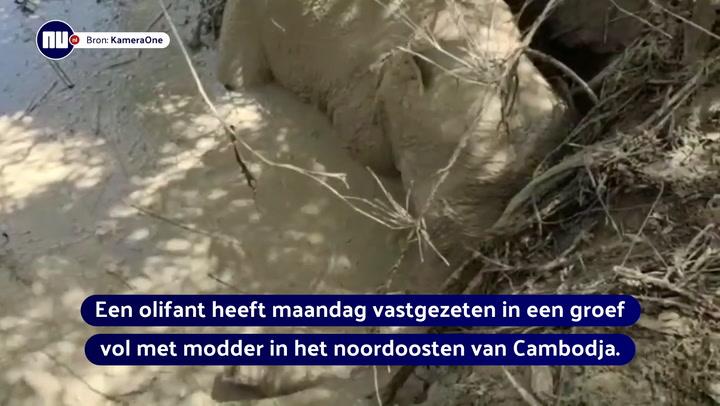 Cambodjanen vluchten voor olifant uit modderput