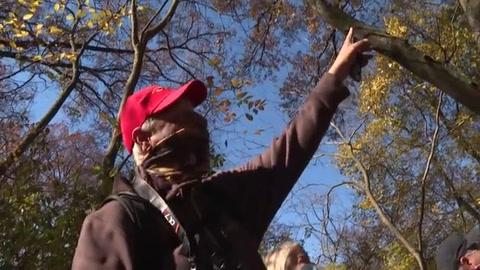 ¿El nuevo hobby anti-covid en NYC? Avistar aves en Central Park
