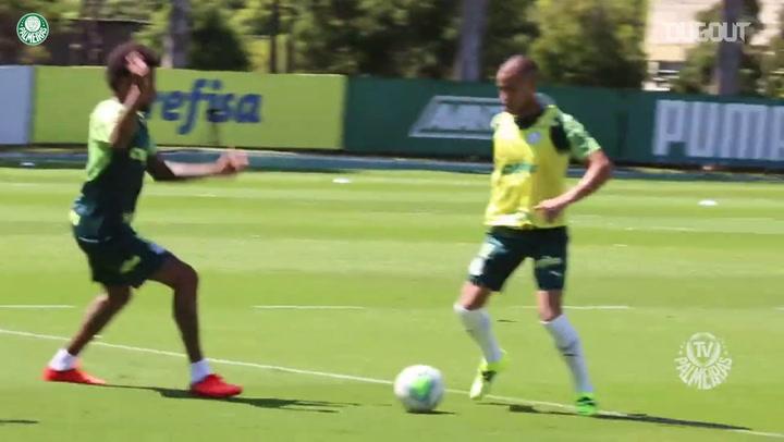 Palmeiras segue em preparação para grande final da Copa do Brasil