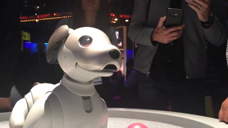 Ces 2019: Sony's robot dog with artificial intelligence