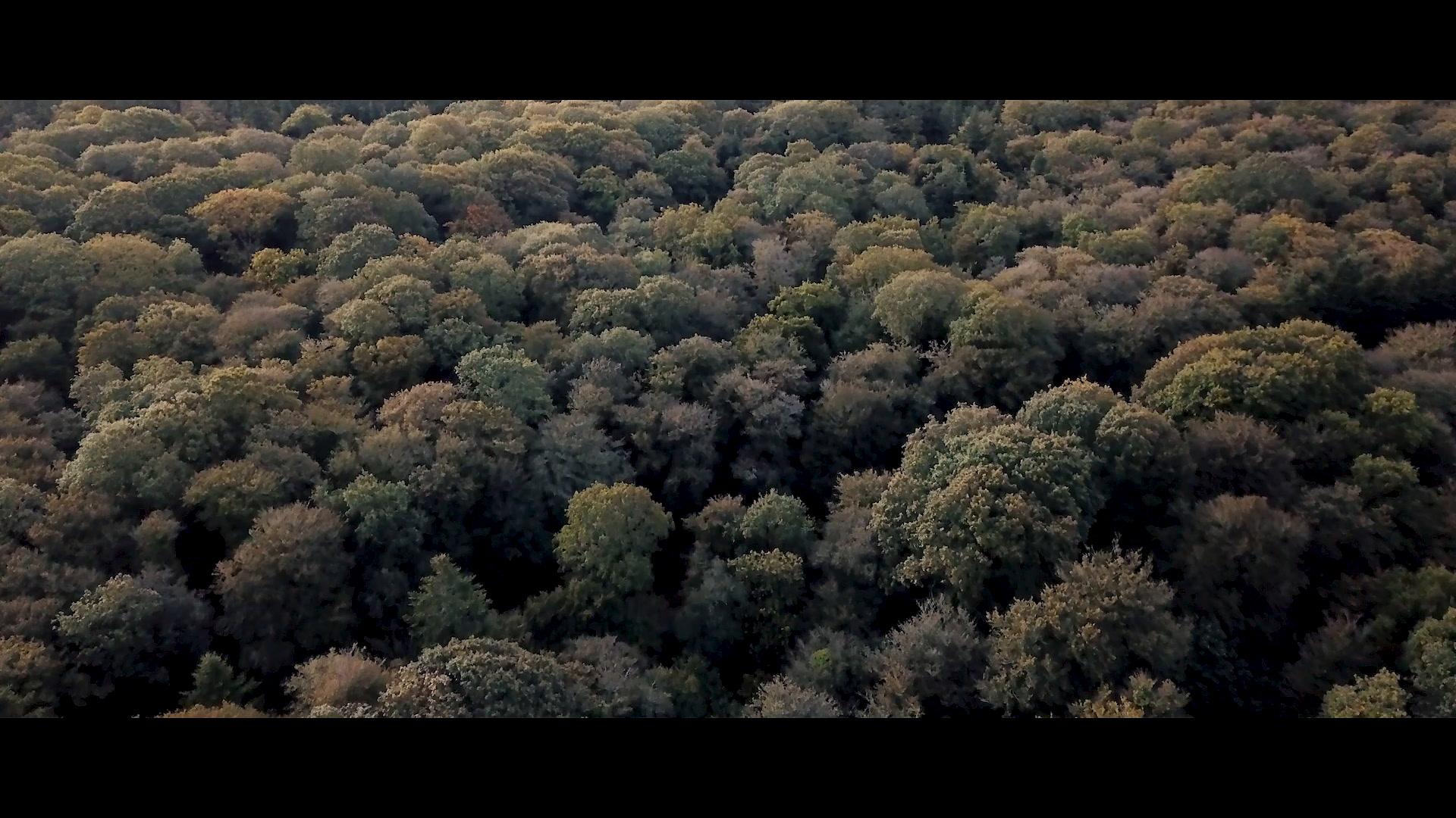 Gaëtan + Florian | Grisy-Suisnes, France | Prieuré de Vernelle