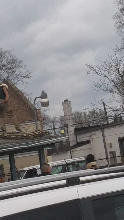 Behold, One The Largest Snakes We've Ever Seen, Escaped Onto A Detroit Roof