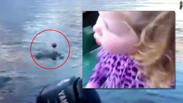 Vill hval leker med 2-åring