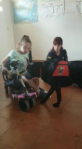 Una perra criada por presas cuidará a una niña rosarina
