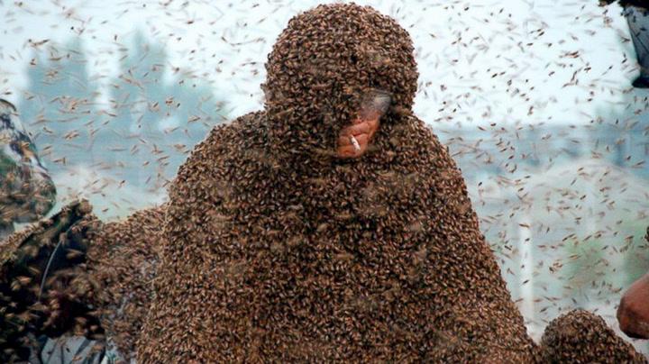 Kledde på seg 1,1 millioner bier