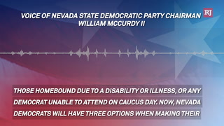 Democrat Virtual Caucus – Video