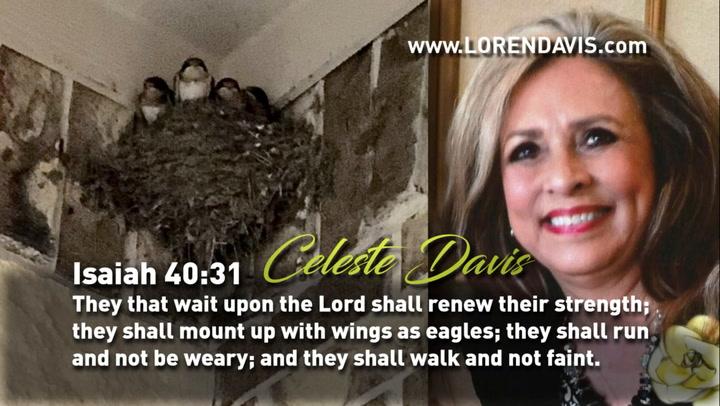Celeste Davis - Isaiah 40:31