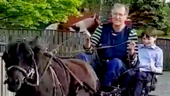 Hamar-hest løp løpsk