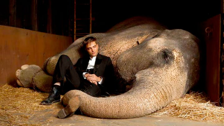 Trailer: «Water for Elephants»