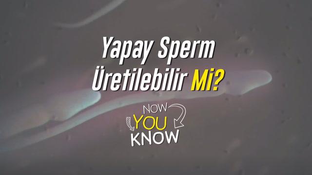 Now You Know - Yapay sperm üretilebilir mi?