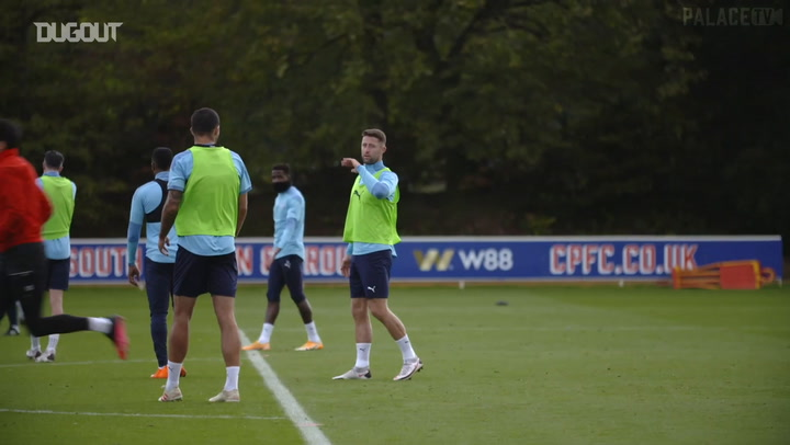 Cahill and van Aanholt return to Crystal Palace training