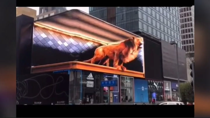 'León gigante' asusta a más de un transeúnte en China