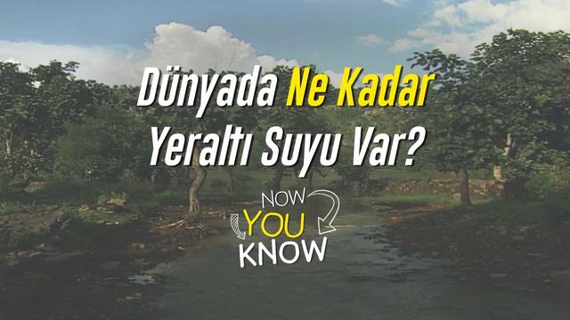 Now You Know - Dünyada ne kadar yeraltı suyu var?